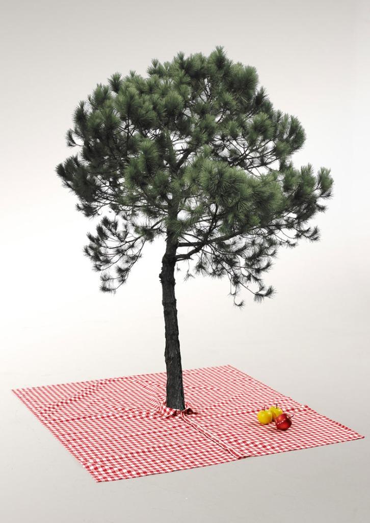 piknikshirt5
